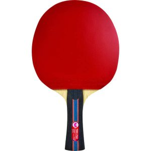 Butterfly 702 Ping Pong Paddle